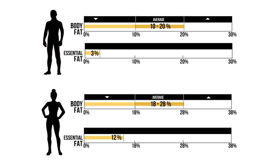 Как определить и оптимизировать процентное содержание жира?