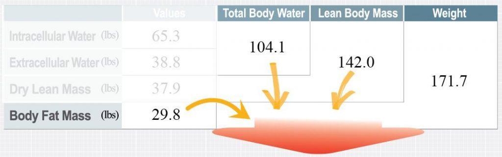 В чем разница между похудением и потерей жира?